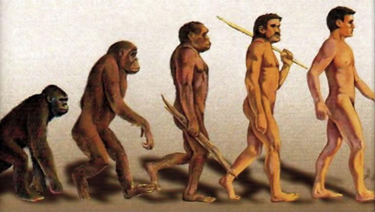 darwins-evolution-monkey-changing-into-man